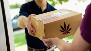 Cannabis Home Delivery Massachusetts