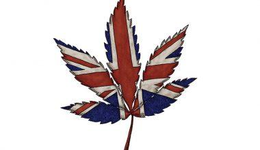 cannabis britain