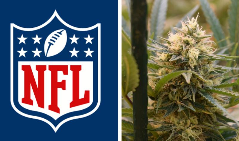 NFL cannabis