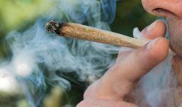 marijuana smoking during Coronavirus