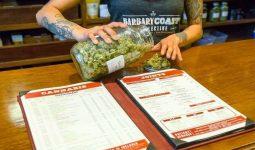 Marijuana dispensary san francisco