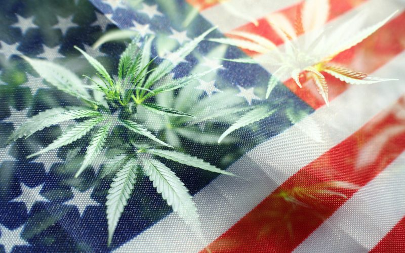 2021 Election marijuana legalization