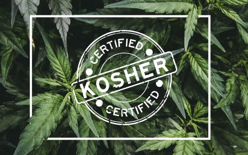 Is Cannabis Kosher - These Rabbis Say Yes