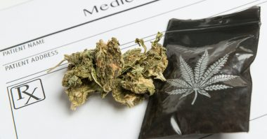 West Virginia Dispensary Licenses & Patient Applications Announced